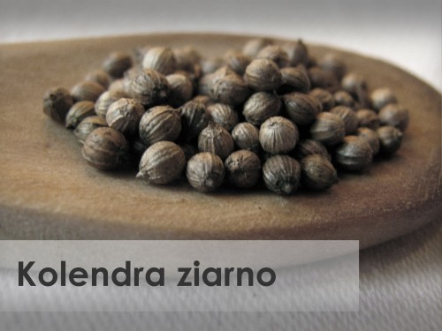 Kolendra ziarno GAP food additives